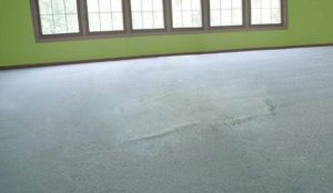 Carpet-Repair-Restretch-Image-expanded